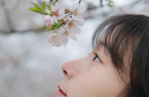 樱花季拍照全攻略,拍出女神范儿就是这么简单!