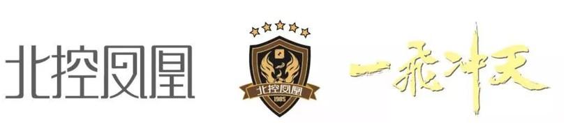2019女超联赛速报|超高关注度刷新历史记录,载入史册