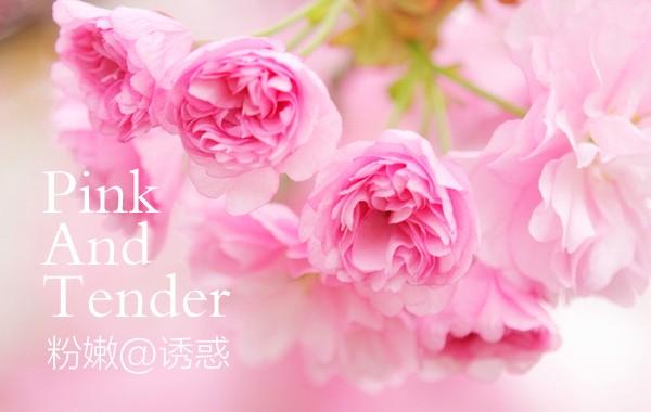 樱花嫩红素有用吗?初源漾带给你神奇的粉嫩体验