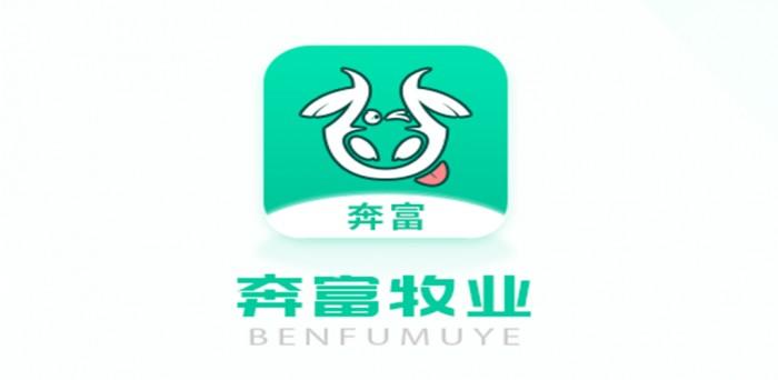 奔富牧业联合中国人民保险,牛只增值有保障