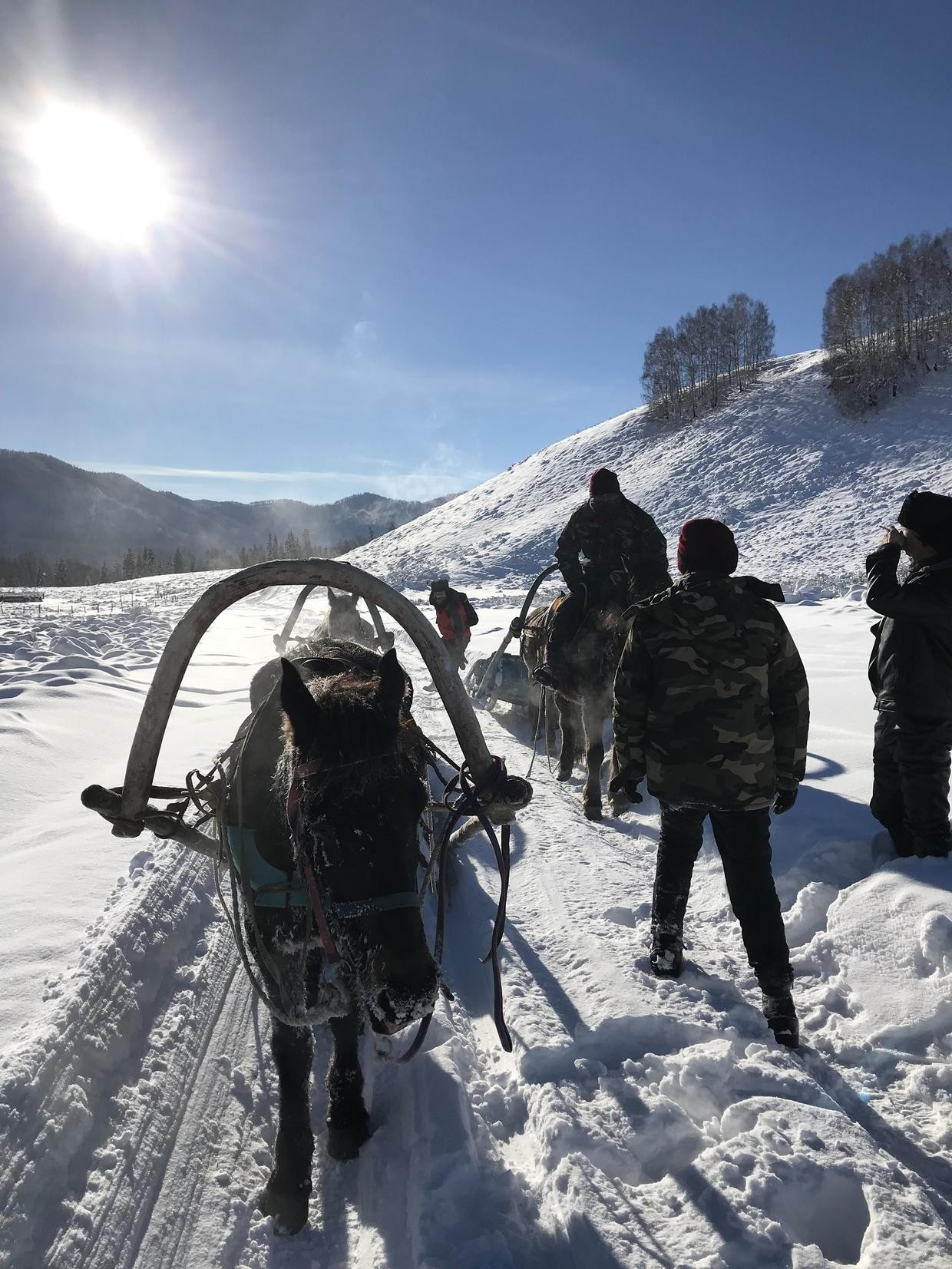 天堂很远,喀纳斯很近!新疆包车越野车7天轻奢冰雪之旅?