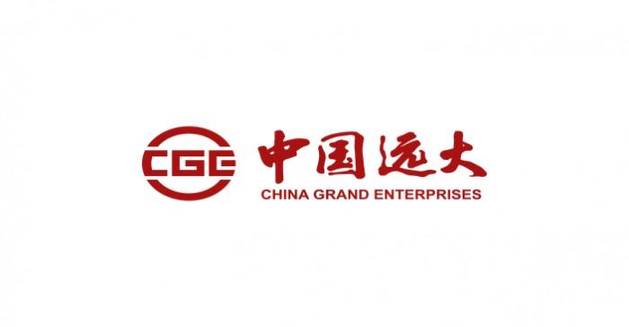 胡凌杰出任中国远大集团执行董事兼副总裁