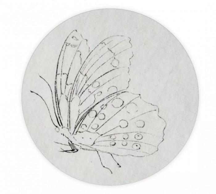 青年画家薄建坤讲解蝴蝶、蜻蜓的画法
