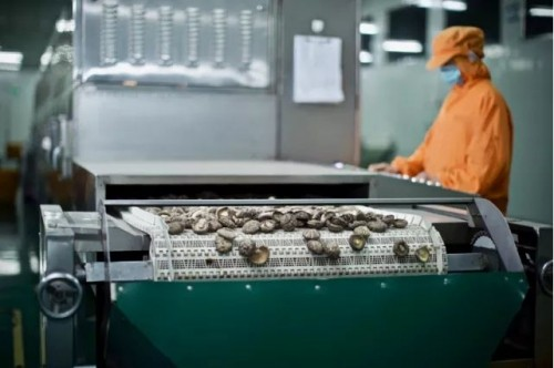 你知道吗?一颗无限极香菇原料生产要经过241道工序