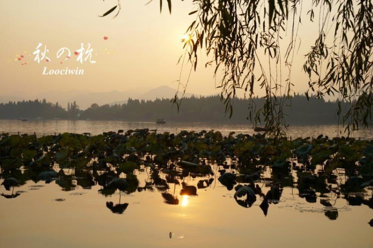 杭州西湖,今起有序开放,网友:终于可以出门放风