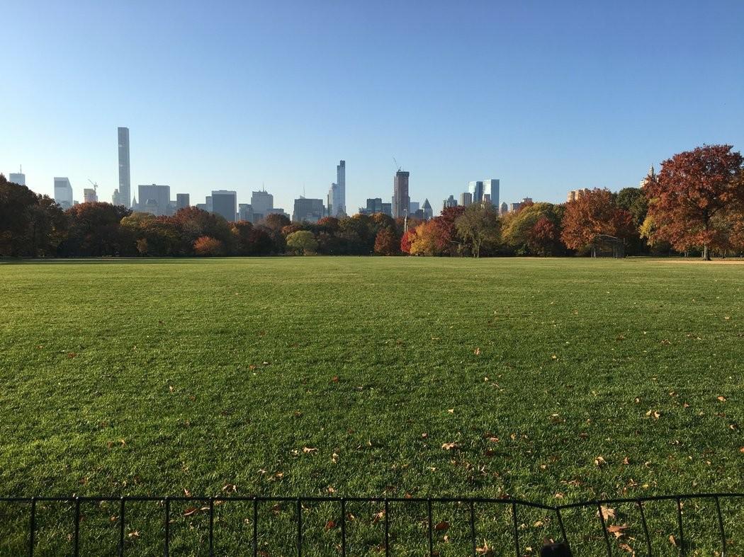 慢生活的福利:哪个市中心的自然风光最宜人?