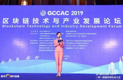 卞东在一带一路商协会大会区块链技术发展论坛上发表主题演讲