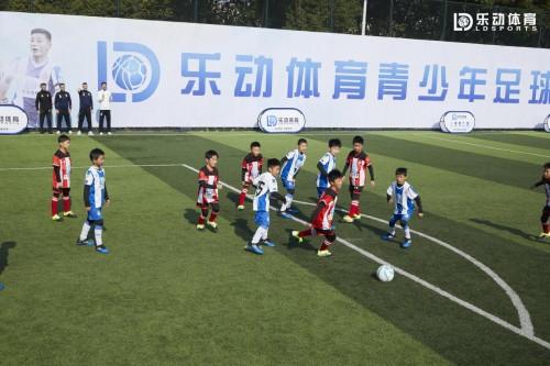 乐动体育培训的火爆,意味着体育专业教育开始复兴