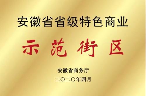 喜讯!定远古城龙虾美食文化街获安徽省特色商业示范街区