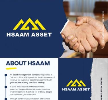 新人必看:hsaam是什么? hsaam盈利模式是什么?