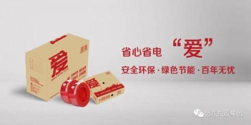 以核级工艺打造省心省电新品 安徽电缆给您更强力的守护