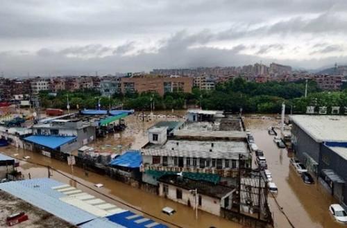 暴雨无情 天安有爱—天安财险广东分公司营业部快速应对522暴雨灾害
