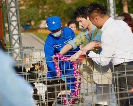 全球首款SGS无添加认证 纯享升级挖掘中国酸奶市场潜力