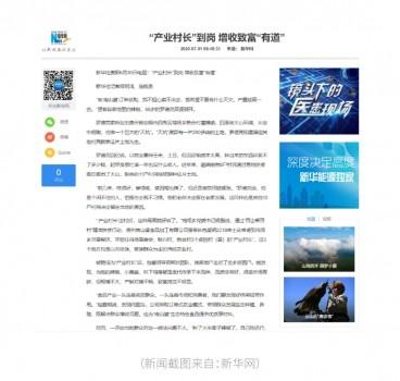新华社关于南山婆产业扶贫专题报道, 引起多家媒体关注转发