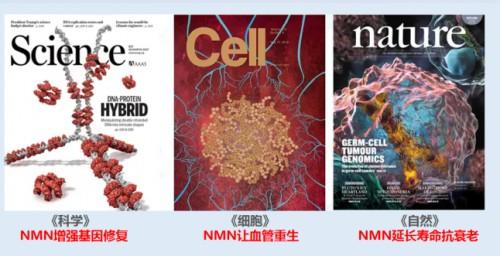NMN購買需謹慎,小心選擇認知誤區!