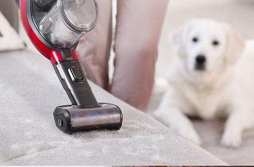 吸尘器迈入体验为王时代 这个国产品牌何以一鸣惊人?