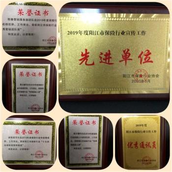 """天安财险广东阳江中支获阳江""""2019年度保险行业之星""""等荣誉称号"""