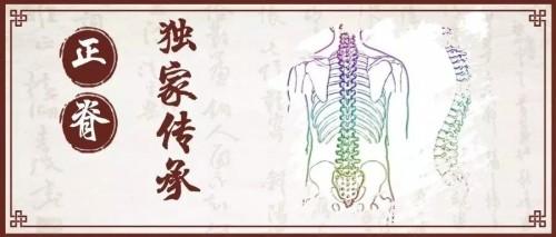经络运行之气与脊柱――脊柱的生命历程 蒋学超