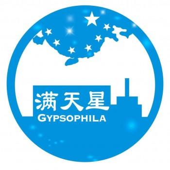 中国海运物流企业的新星——满天星物流