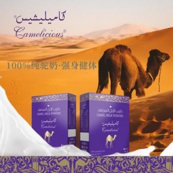 """你购买的是""""纯驼奶""""吗?Camelicious迪拜紫盒骆驼为你解读"""