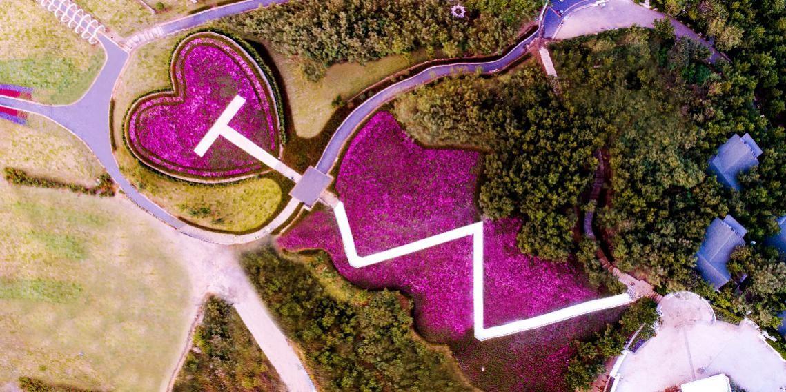 LOVEYE天泰山艺术小镇:青岛艺文青年的诗和远方