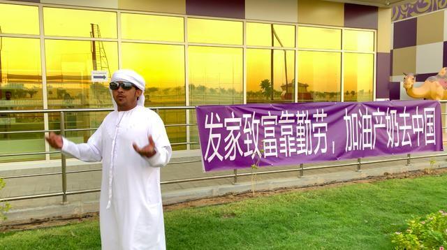 """不一樣的迪拜產品—""""沙漠白金""""駱駝奶"""