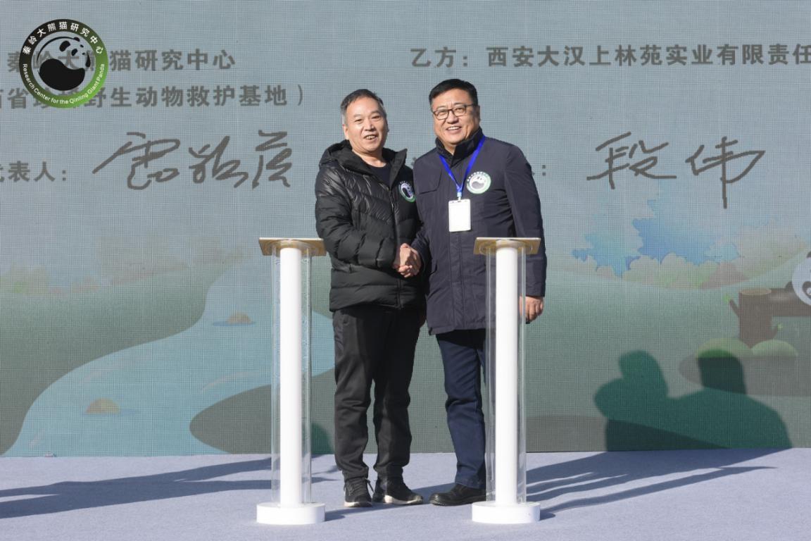 陕西将建设秦岭大熊猫科学公园 位于长安区滦镇