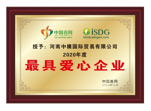 """铭记社会责任感,iSDG被中国善网授予""""最具爱心企业""""荣誉"""