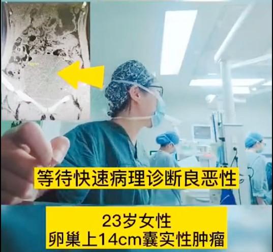 华夏源免疫细胞存储,防癌的几率有多高?