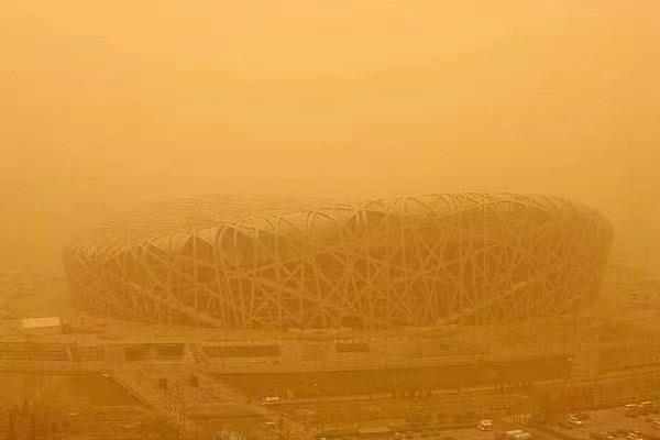抵御沙尘暴来袭、阿诗丹顿紧急驰援内蒙阿拉善沙漠10000棵梭梭树