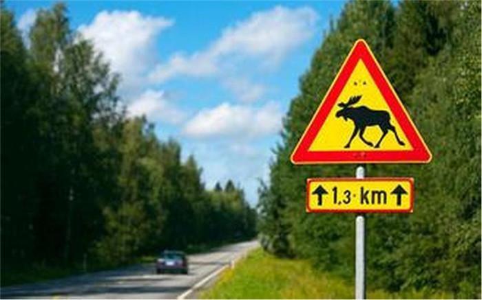 新车为什么要搞麋鹿测试?真相来了!