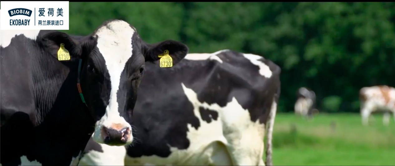 迎新时代消费风口,爱荷美奶粉势能强劲品质再升级