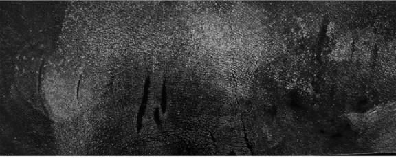 2021-05-13_线上展厅丨艺术荐·第二届当代艺术交流展(第五批)6547.png