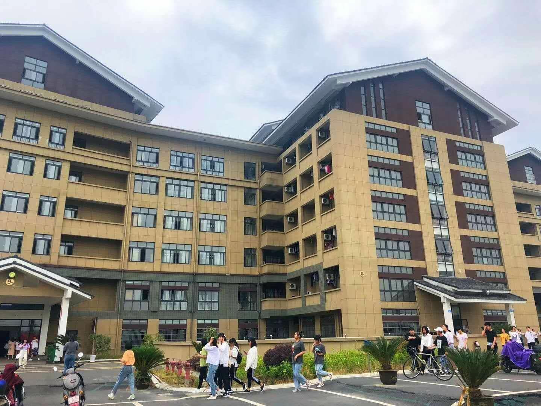 杭州职达电商学院3+2,致力培养高技能时代新人
