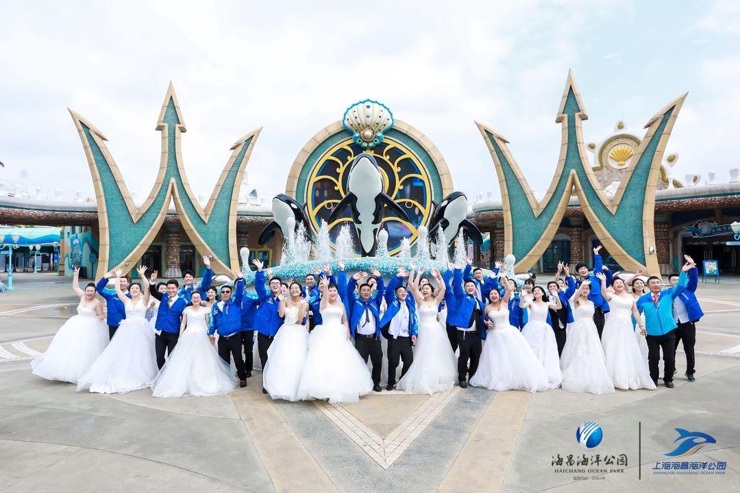 上海海昌海洋公园520变身蓝骑士海洋婚礼舞台 让两抹蓝色温情相遇