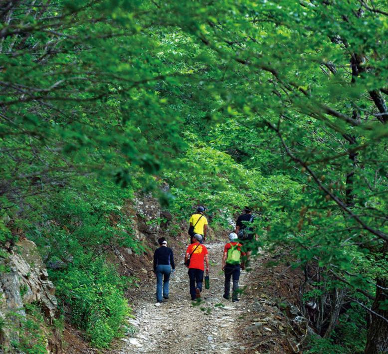 江原道在废矿区打造地区绿色新政事业