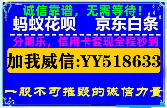 京东白条套取现金2020(借钱能套白条的app软件)