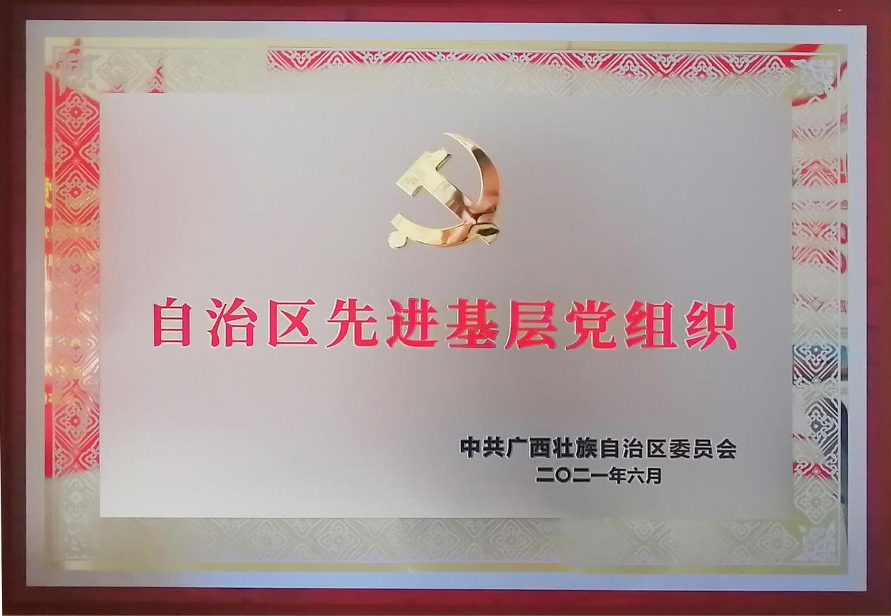 双蚁药业党支部获自治区表彰了 点赞!
