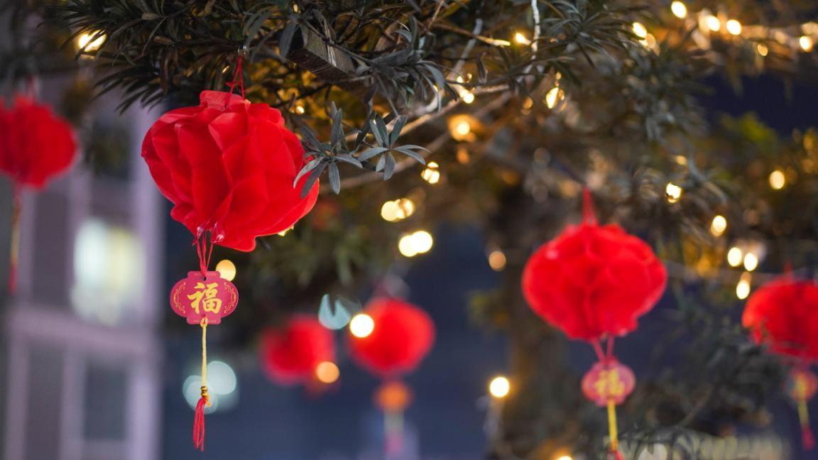 花果园:大红灯笼挂 浓浓年味儿飘,没有发生烂尾的宏立城集团真美