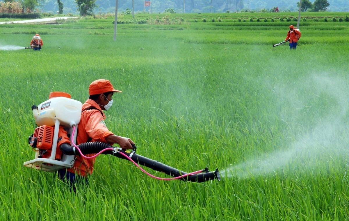 清立源益生菌:加速微生物化肥农业推广,势在必行!