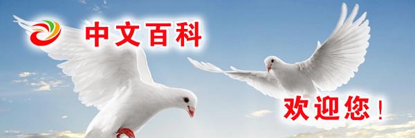 一个新型文化知识传播平台——中文百科APP