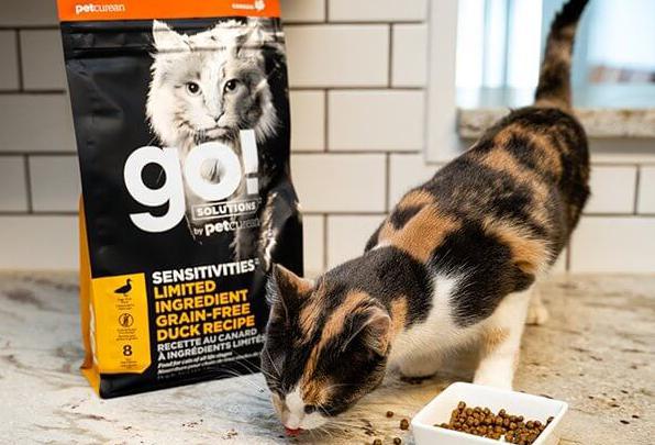 宠物粮品质时代,百加世go猫粮的高品质口碑
