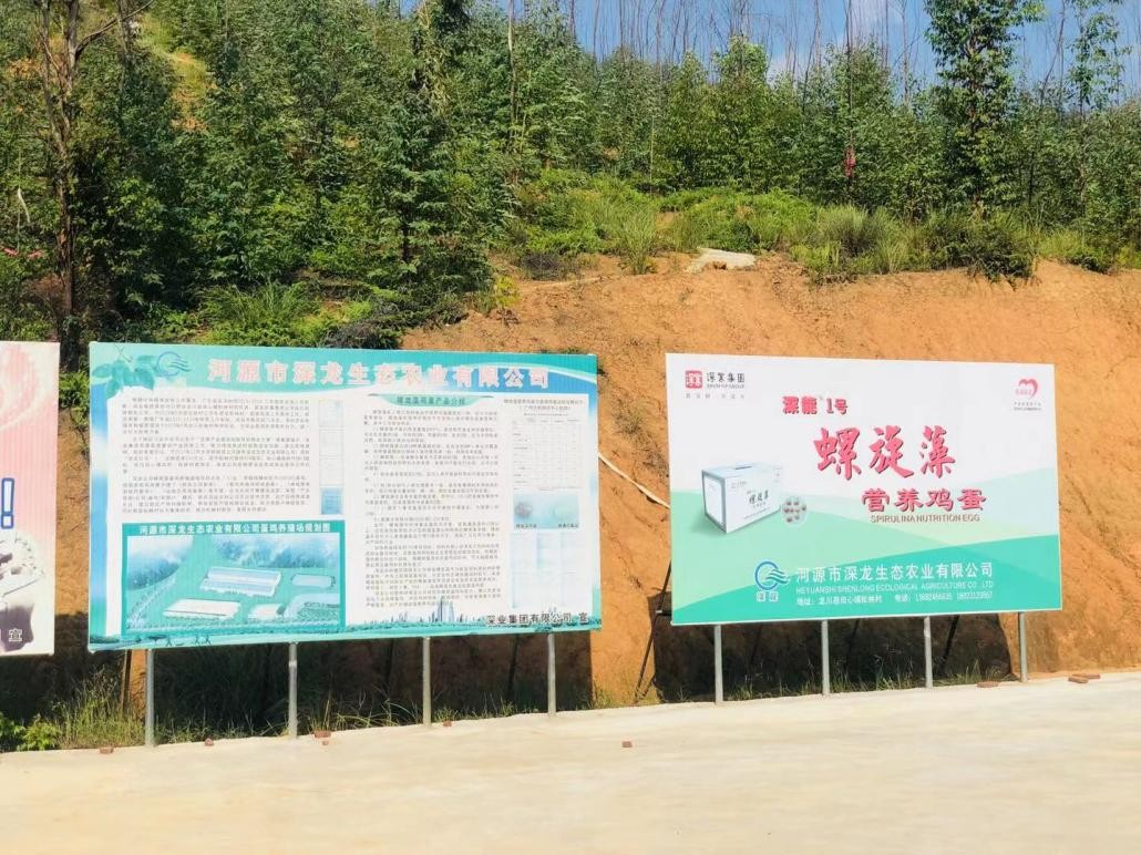 松林村高科技农产品深受百姓喜爱,深业集团帮扶项目助力乡村振兴