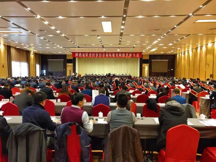 天朗控股集团董事长孙茵女士荣获陕西省优秀民营企业家